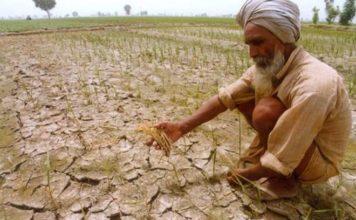 Gujarat, Gujarat farmers, Gujarat farmers relief, gujarat rainfall, scanty rainfall, india news