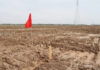 © Reuters. Red flag is seen on the land secured by Tesla for its Gigafactory in Shanghai