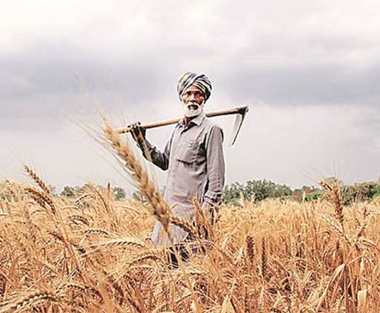 farmers income, doubling farmers income, indian farmers, narendra modi, economy news